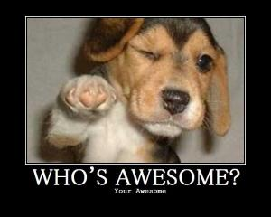 Whos-Awesome_Dog